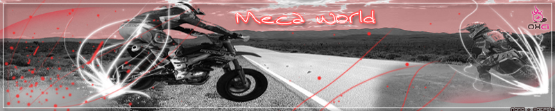 Meca-world