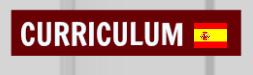 CURRÍCULUM EN ESPAÑOL