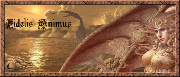 Fidelis Animus
