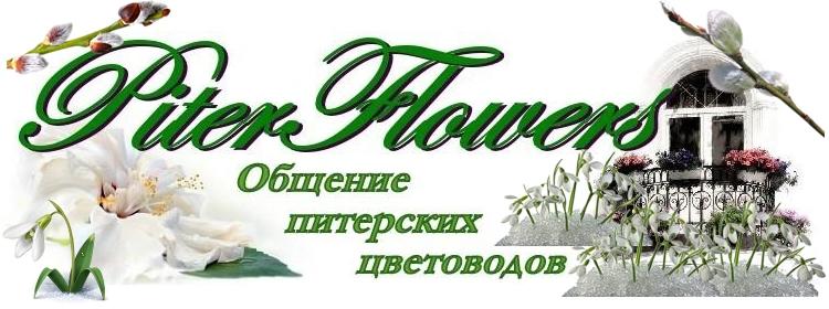 PiterFlowers. Общение питерских цветоводов.