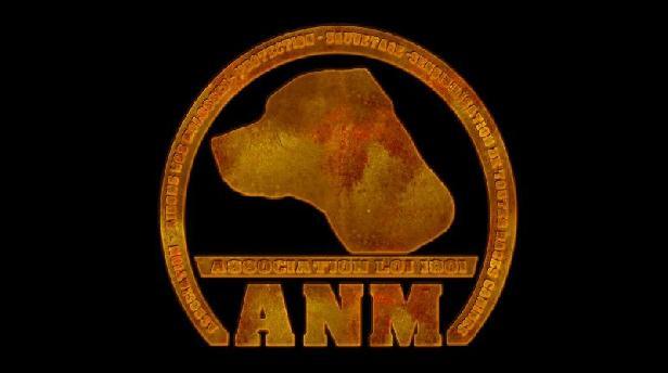 Association ANM