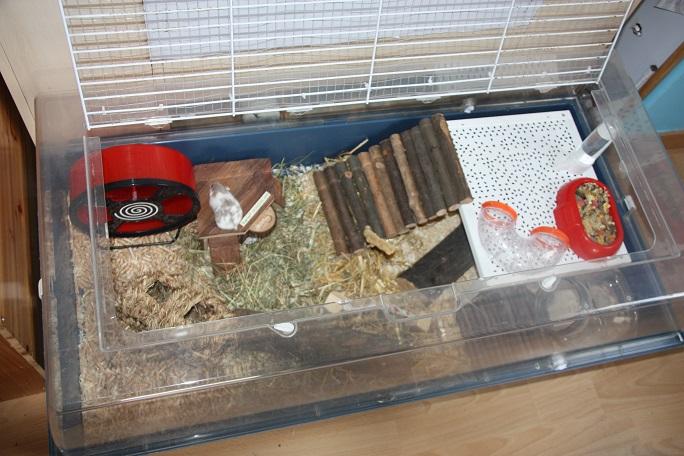 les cages de mes hamsters. Black Bedroom Furniture Sets. Home Design Ideas