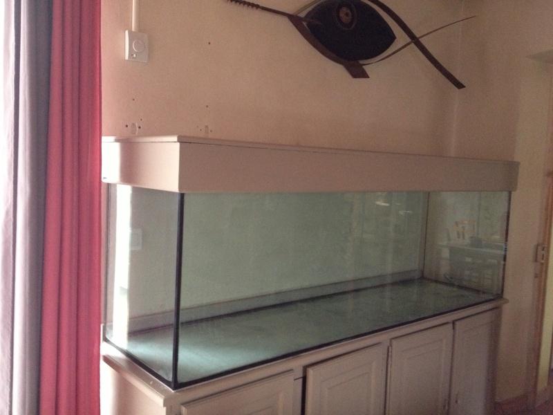 quelle pompe pour un aquarium plant 233