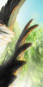Avatar 170*340