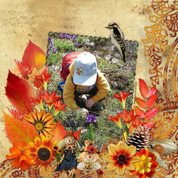 http://i74.servimg.com/u/f74/16/86/52/86/autumn10.jpg