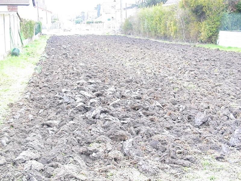 Plantation des pommes de terre page 2 - Date plantation pomme de terre ...