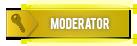In-Game Moderator/Bug Finder