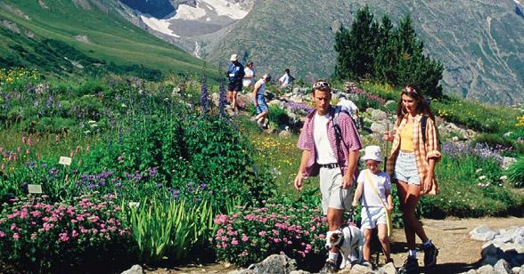 provence alpes cote azur tourisme - Photo