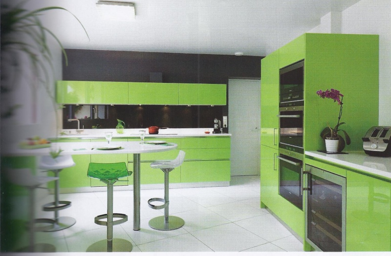 Cuisine gris et vert anis view images cuisine grise mur for Meuble cuisine vert anis