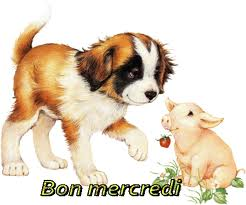 bon_me10.jpg